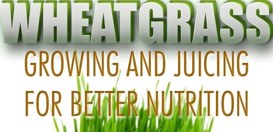 wheatgrass_pr