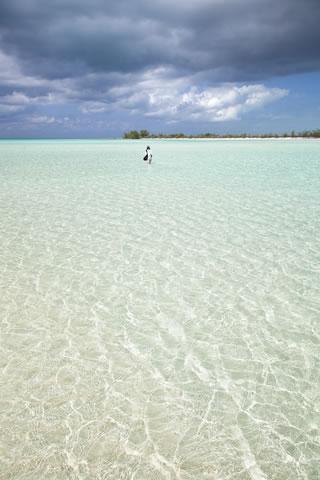 The endless beaches of Eleuthera