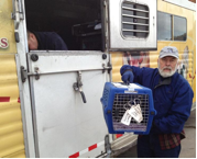 Rescued Cats with Pets LLC Transport Vehicle (courtesy photo)
