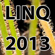 "LINQ 2013's motto: ""Innovations and Quality: The Future of Digital Resources"""