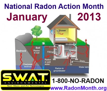 Radon Month 2013