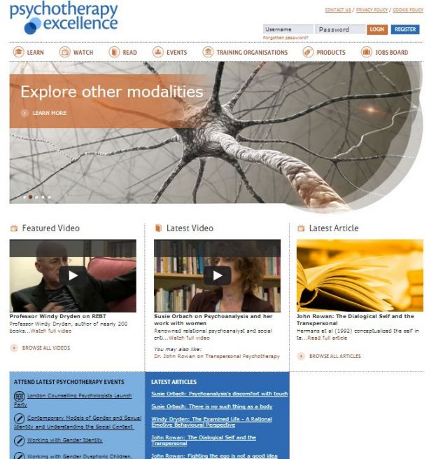 Psychotherapy Excellence website