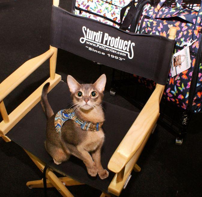 Racy Mooner in her Director's Chair