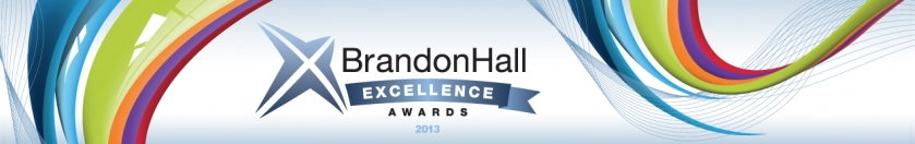excellence_awards_banner 2013