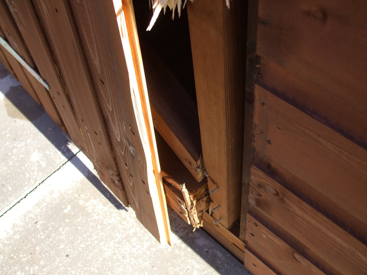 Beast Sheds wooden shed