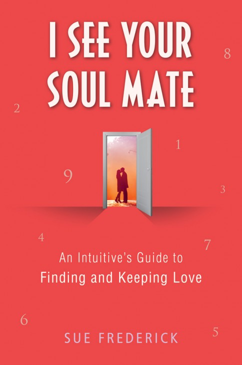 I See Your Soul Mate book cover