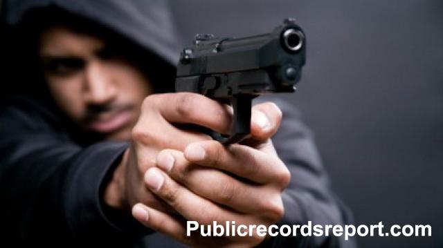 Public Arrest Reports