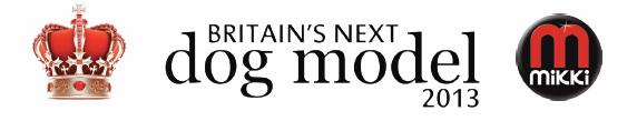 BNDM_logo_2013