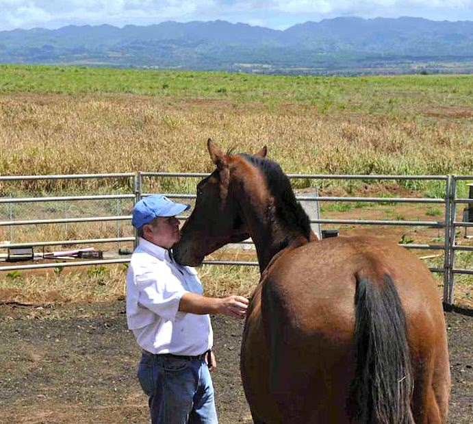 Leadership Lessons From The Horse/Human Relationship