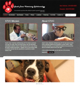 South Texas Veterinary Ophthamology website by Focused Idea