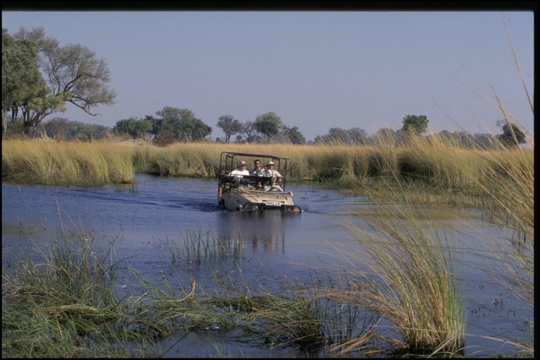 River Crossing, Okavango Delta, Botswana