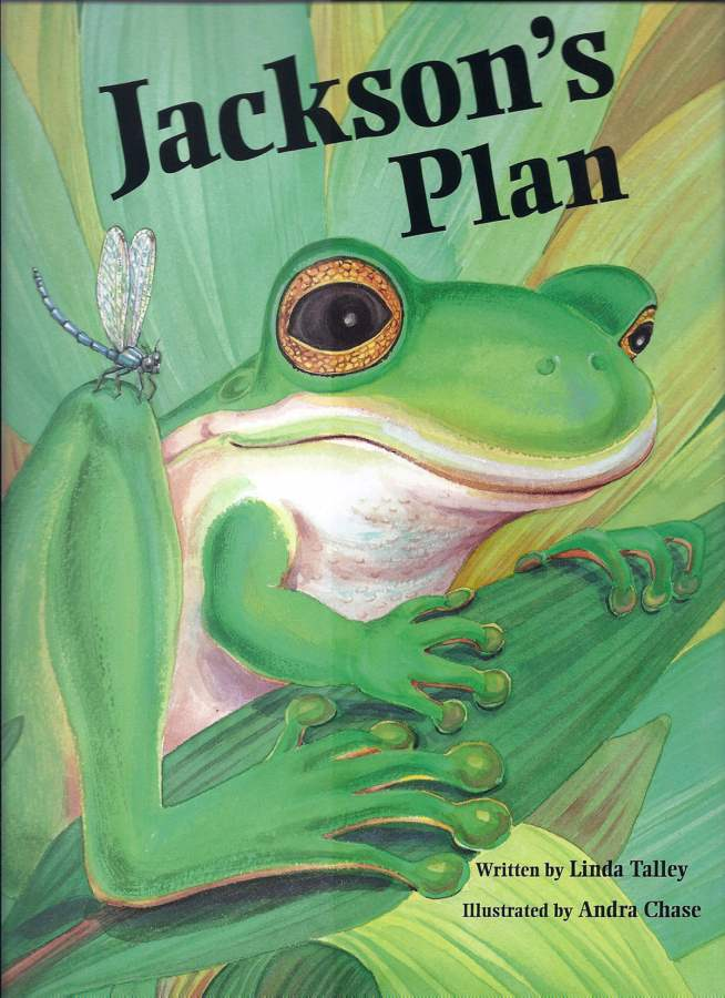 Jackson'sPlan_amazon