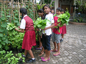A school garden in Bali, Indonesia