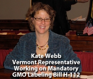 Kate Webb Vermont Representative