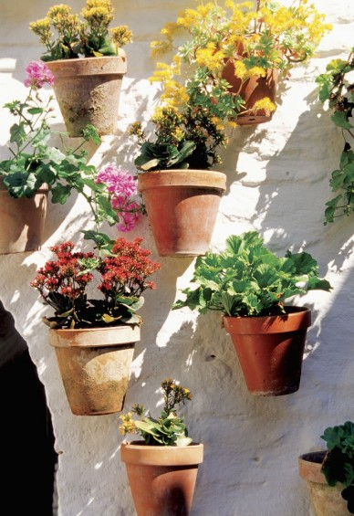 Easy Vertical Gardening