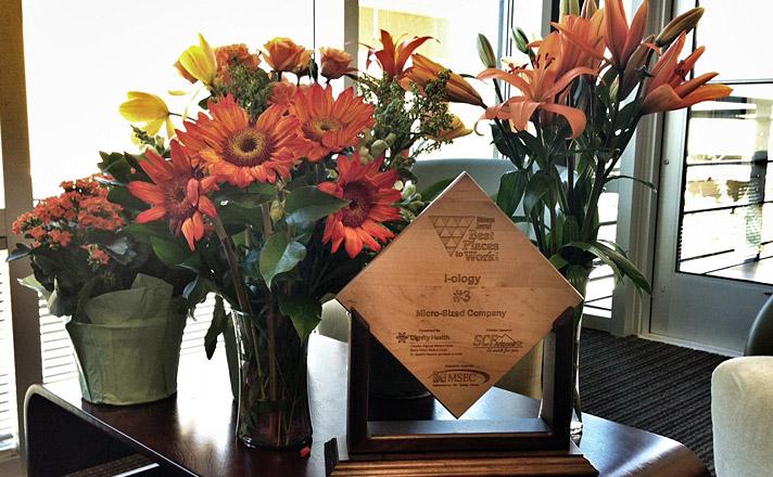 Iology celebrates 15 years in Phoenix Arizona