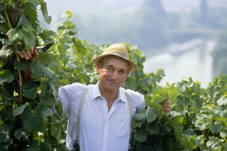 wine tours Treasure of Europe Tours