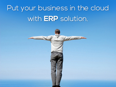 Put your business in the cloud with ERP solution