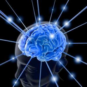 brain-photos-free-3