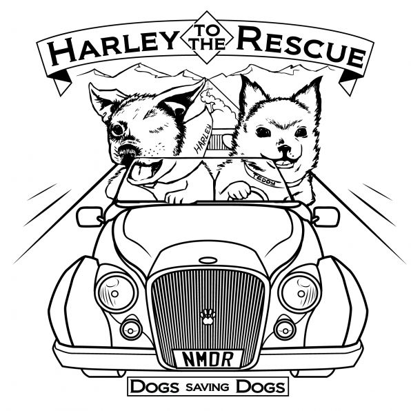 Harley to the Rescue - DOGS SAVING DOGS!