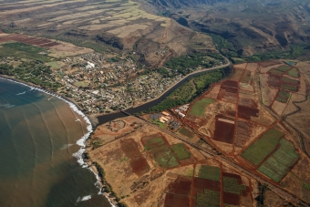 Kauai Community Surrounded by GMO Operations