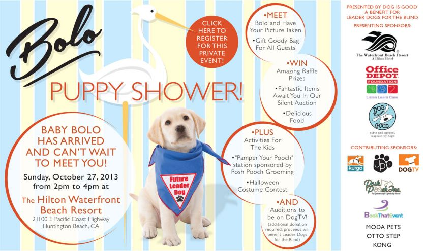 Puppy Shower Information