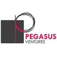 Pegasus Ventures Michigan