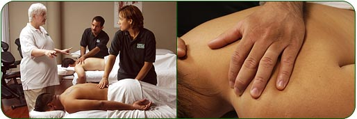Massage School In Houston Announces 2014 Class Schedule. 401k Employer Contributions Promo Gift Bags. Get A Toll Free Number For Free. Long Island Exterminator Floor Cleaner Recipe. Tlc Lifetime Commitment Chicago Water Service. What Is Criminal Justice Technology. Customized Promotional Pens My Dish Portal. Best Cheap Vps Hosting Uverse Mcafee Download. Ca Dept Of Child Support College Salem Oregon