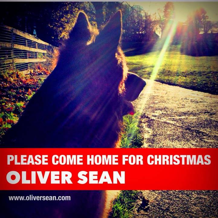 Please Come Home Xmas - Oliver Sean (2013)