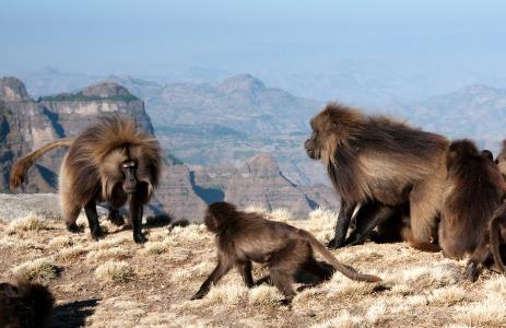 Extreme Ethiopia - Ride Rough Guides' nu