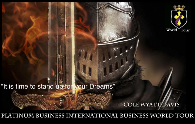 Platinum Business International World Tour 2014