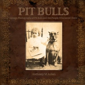 Pit Bulls by Anthony Julian