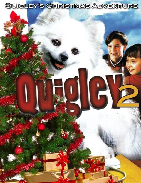 Quigley's Christmas Adventure