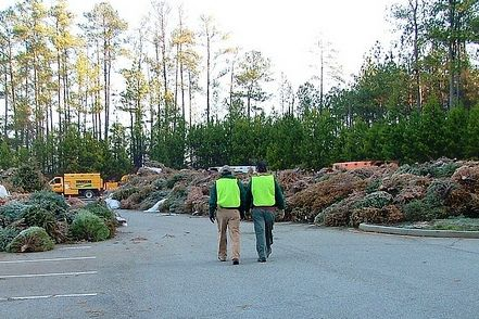Volunteers Needed for Gwinnett Clean & Beautiful's Bring One for the Chipper