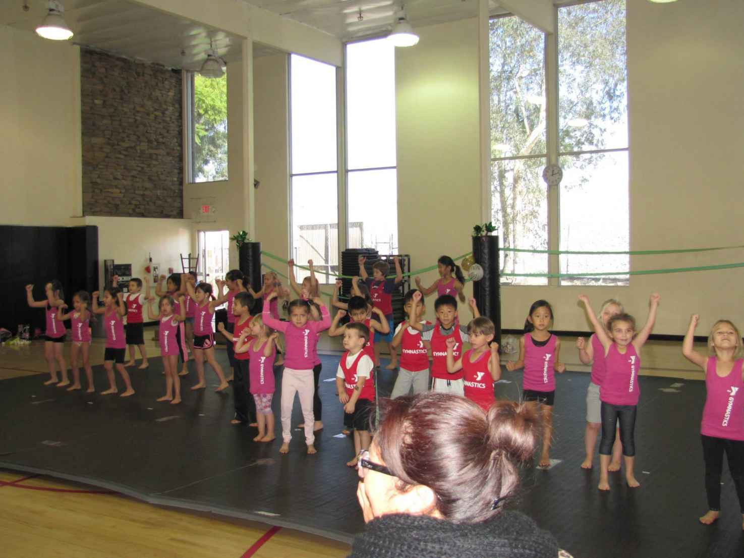 Youth Gymnastics at the Fullerton Family YMCA