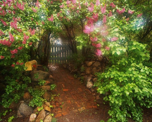 Your Path to Enlightenment starts here in the Garden of your Life.