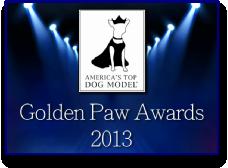 Golden Paw Awards