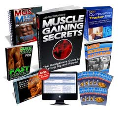 muscle gaining secrets 2.0 download