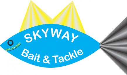 skyway logo 700x400px