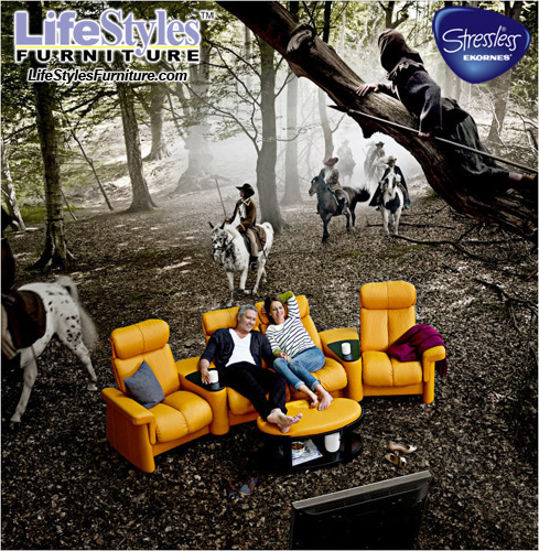 LifeStyles Furniture - Ekornes Stressless