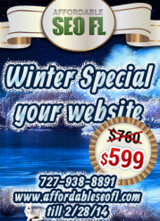 Winter Special: Website Design promotion