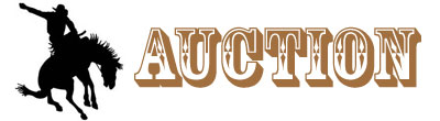 2014 Auction Rhinestone Rodeo
