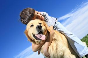 Use Pet Supplements For Optimum Pet Nutrition