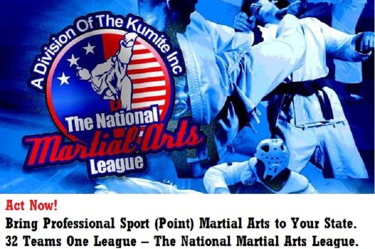 The National Martial Arts League Seeks Team Owners