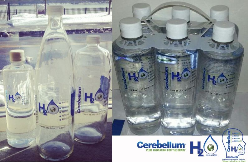 Cerebellum H2O Bottles