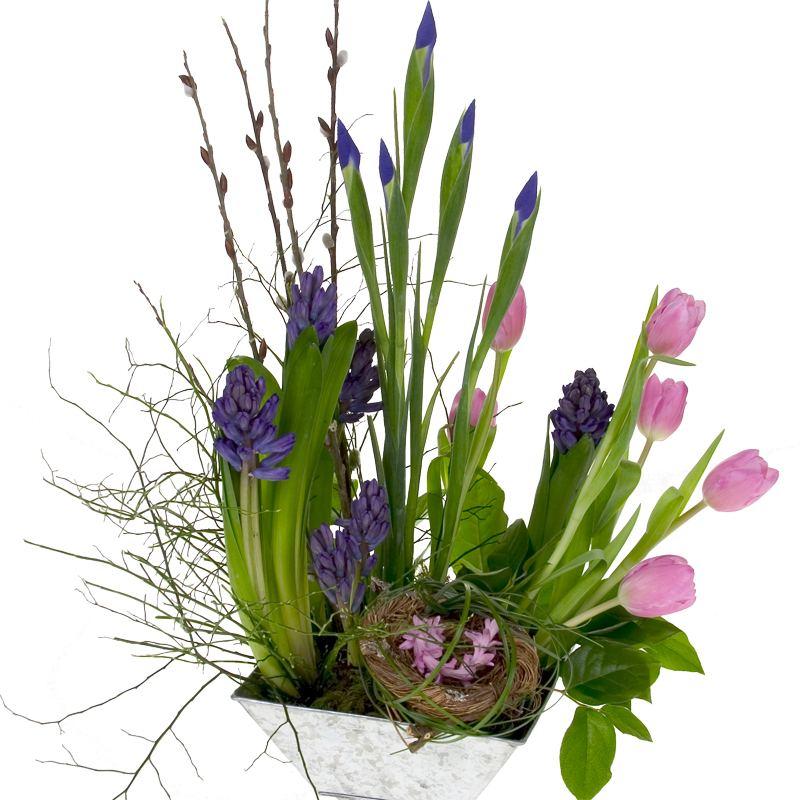 Spring Bulb Flowers Care And Handling Tips For Splendid Long Lasting