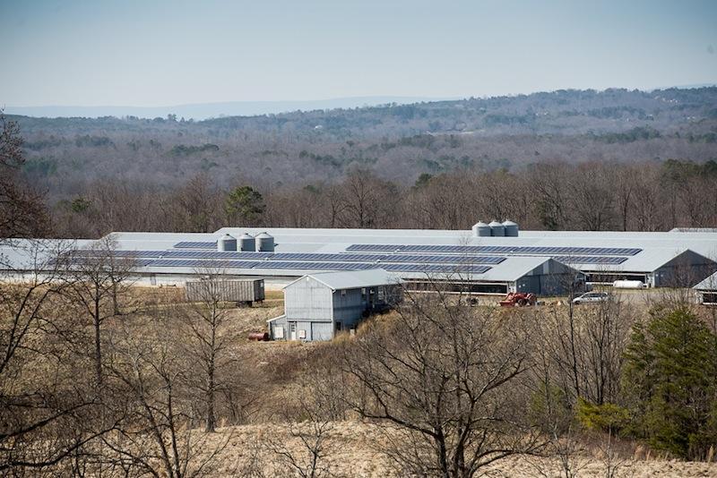 Radiance Solar's Providence Hill Solar Installation, Feb 2014