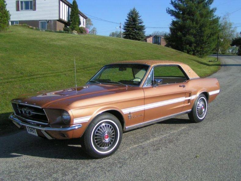 Branded Mustang