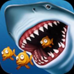 shark512
