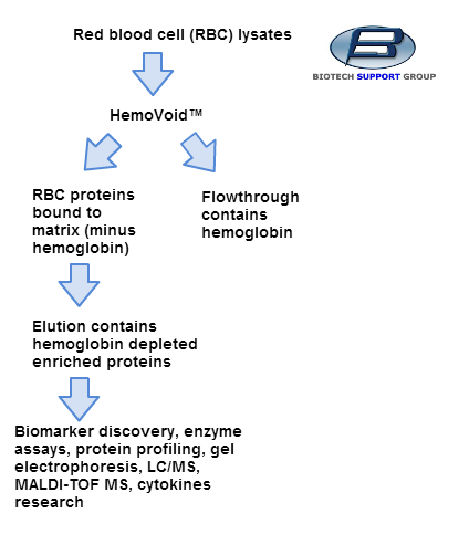 biotechsupportgroup_HemoVoid_HumanRedBloodCellProt